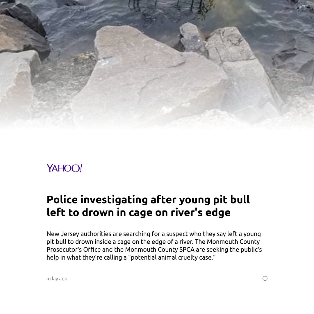 Yahoo News screenshot 1